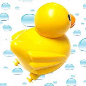 rc-duckie2